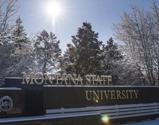 Montana Eyalet Üniversitesi