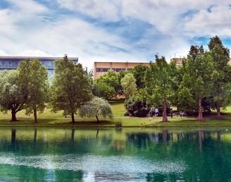 Surrey Üniversitesi